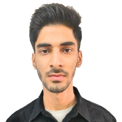 Hamza Naqvi