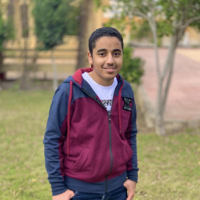 Amr Saad Sweffi